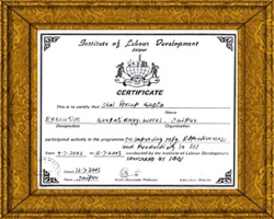 Certificate for Institute of Labour Development